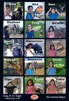 First Signs Poster - ASL Lenticular Poster Sign Language Basics, Sign Language For Kids, Sign Language Chart, Sign Language Phrases, Sign Language Alphabet, Sign Language Interpreter, Learn Sign Language, British Sign Language, First Language