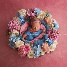 ~ Babies of 2015 ~ Zara Newborn Posing, Newborn Shoot, Newborn Pictures, Baby Pictures, Baby Portraits, Newborn Photography, Photography Ideas, Floral Wreath, Zara