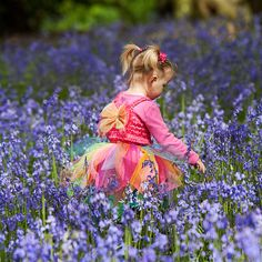 Fairy in the bluebell woods