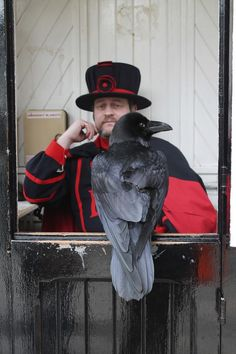 Both the ravens and Beefeaters are the guardians of the Tower of London. Whilst the Beefeaters are free to come and go; if the ravens were to leave the Tower, the kingdom would fall.
