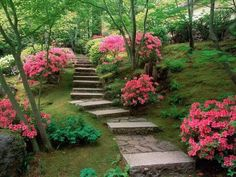 LOVE this path on the slope.  My yard is sloped downward and I would love to do this.
