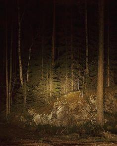A few little goddesses on his throne... #woods #featuremeinstagood  #instagood #vsconature #vscorussia #outdoors  #exploretocreate #livefolk #natgeoru #adventuretime #outsideculture  #socality #wildernessculture #liveauthentic #instagramrussia #adventurevisuals #adventure #wandering #landscape #artofvisuals #natureaddict #инстаграмнедели #visualsoflife #instagoodmyphoto  #showmerussia #vsco #санктпетербург #spb #night by alexandraelkina http://bit.ly/AdventureAustralia