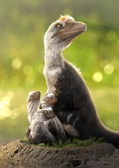 Mesozoic Era Dakotaraptor steini mother and hatchlings. From Dinosaurs In The Wild with graph Prehistory Dakotaraptor Dinosaurs Era graph hatchlings Mesozoic Mother Prehistory illustration steini Wild Prehistoric Dinosaurs, Dinosaur Fossils, Dinosaur Art, Prehistoric Creatures, Dinosaurs Alive, Dinosaure Herbivore, Feathered Dinosaurs, Les Reptiles, Spinosaurus