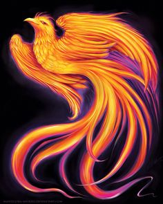 Like a Phoenix from the ashes, I am rising again xxx