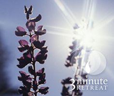 Una invitación 3 Minute Retreat