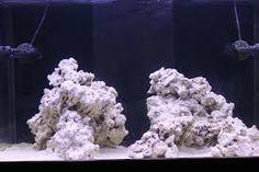 aquascaping 90 gallon reef tank - Google Search