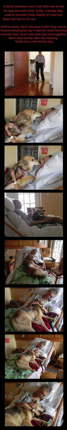 A dying man's last wish. I think he 'held on' until he could hold his sweet dog one last time. Love ❤ is a strong bond. Bless them both.