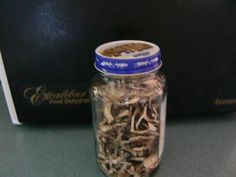 Dehydrated organic mushrooms- stephanie at EfoodDehydrator.com!