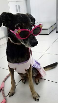 Anita loves Sunglasse