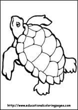 Fabulous Free Ocean Coloring Pages 86 Ocean Coloring Pages free
