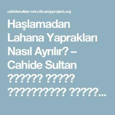 Haşlamadan Lahana Yaprakları Nasıl Ayrılır? – Cahide Sultan بِسْمِ اللهِ الرَّحْمنِ الرَّحِيمِ