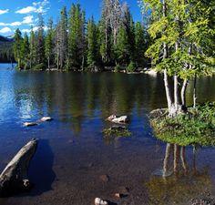 ooty lakes