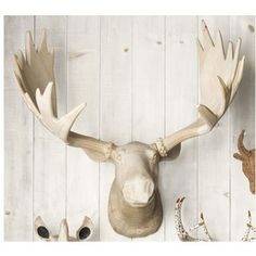 I know, it's strange. I really want a fake animal head on my wall   faux taxidermy