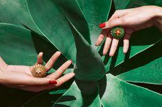 В коллекции Cactus de Cartier две темы — цветная и монохромная. В первом случае доминирует зелень изумруда или хризопраза, на которой распускаются крошечные цветы из сердолика, где-то сверкают бриллианты — вместо иголок. Во втором ставка сделана на узоры из желтого золота — приятно, что в Cartier про него вспомнили среди засилья розовой лигатуры — и бриллианты. В паре украшений, впрочем, оставили яркость «цветам» драгоценных кактусов, пустив на лепестки афганский лазурит. Нам очень нравится!