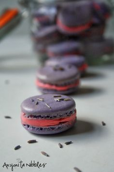 Lavender macarons with rosewater buttercream filling