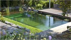 Biotop Natural Pools. Maybe they will start building them here in the US.
