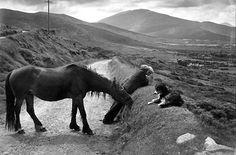 Matéria publicada no site Fashionatto Não é difícil reconhecer uma fotografia do francês Henri Cartier-Bresson. Ele tinha o enorme talento de congelar momentos que pareciam ter surgido magicamente …