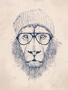 COOL LION » Prints