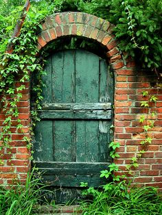 Green Garden Door Photograph by Steven Ainsworth