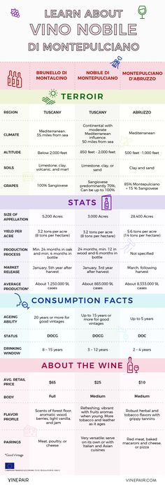 Learn About Vino Nobile di Montepulciano [INFOGRAPHIC]