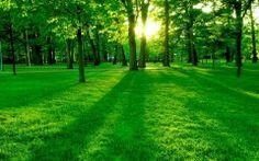 Nature Images Desktop Backgrounds