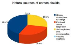 Natural sources of carbon dioxide (CO2) emissions