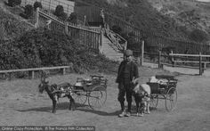 Felixstowe, Goat Carts 1906, from Francis Frith