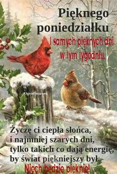 Painting, Animals, Good Morning Funny, Quotes, Animales, Animaux, Painting Art, Paintings, Animal Memes