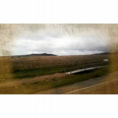 So I could find my way (to dream again) (A new remix for a previous pic posted some months ago)  #photography #remix #fields #instamoments #album