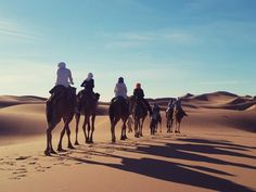 Planning a family Tours in morocco doesn't have to be a hassle. Here are a number of tips to make your Moroccan family holiday one that is not only tolerable, But also memorable for years to come.