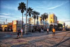 Let's travel with our minds to some known places 💫 California Love, Venice Beach, Freedom, Street View, Usa, Places, Summer, Travel, Instagram