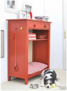 cute cute bed for my lovely dog :)