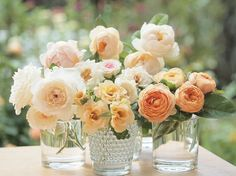 Peach peonies - With golden glitter in the vases? -