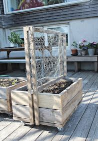 mariefriis: DIY - klatrevegg til blomsterkasse på hjul Privacy Screen Outdoor, Garden Privacy, Garden Trellis, Terrace Garden, Garden Beds, Long Planter, Casa Loft, Garden Planter Boxes, Greenhouse Plans