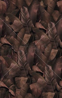 Botany Tropical Rose Brown - Fototapeter & Tapeter - Photowall