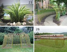 Bonnie Gale Living Willow Structures