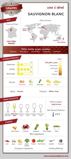 Wine&About-D1-GRAPE-SAUVIGNON BLANC_140218