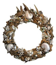 Driftwood and Exotic Shell Mirror