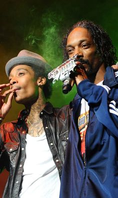 Pin for Later: Watch the Scary Moment a Railing Full of People Collapses During Snoop Dogg and Wiz Khalifa's Concert