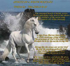 Mustang Horse | 2012829112141_White_Mustang_horse.jpg
