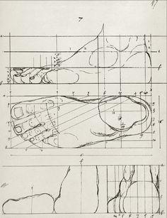 Art of Anatomy 1513-1879 ✤ || CHARACTER DESIGN REFERENCES | キャラクターデザイン | çizgi film • Find more at https://www.facebook.com/CharacterDesignReferences & http://www.pinterest.com/characterdesigh if you're looking for: bande dessinée, dessin animé #animation #banda #desenhada #toons #manga #BD #historieta #sketch #how #to #draw #strip #fumetto #settei #fumetti #manhwa #cartoni #animati #comics #cartoon || ✤