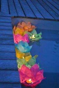 flores-iluminadas-na-piscina