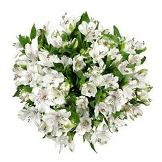 White alstromeria. Really pretty in large bouquets. And inexpensive.