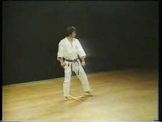 Heian Nidan. Karate Shotokan. With Hirozaku Kanazawa. There are perhaps 100 kata across the various forms of karate, each with many minor variations.