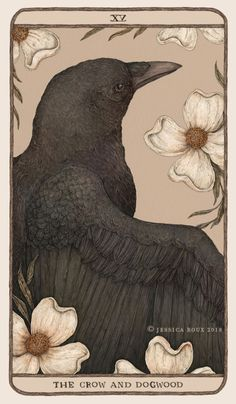 The Crow and Dogwood, another card for Woodland Wardens, along with the reverse side of all the oracle cards. I'm also proud to announce that you can find all the info and cards about Woodland Wardens. Illustration Art, Illustrations, Art Moderne, Art Plastique, Framed Art Prints, Lino Prints, Block Prints, Dark Art, Art Inspo