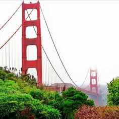 .The gorgeous Golden Gate Bridge from the southern side.