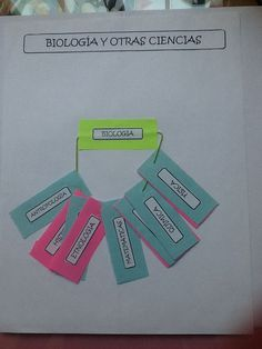 Ciencias auxiliares de la biología: http://www.pinterest.com/julissa87/teaching-biology-biolog%C3%ADa-1-bachillerato/