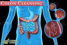 Here is a 7-day best colon cleansing diet plan to get rid of parasites and detox it completely. When you do a colon cleanse naturally, you will fee much lighter and healthier inside.