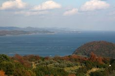 【岡山県】河﨑雅樹さん(公益社団法人 日本青年会議所 中国地区 岡山ブロック協議会 2012年度会長)に聞きました。/Q.3瀬戸内の課題は?………A.「海を育てるには山を育てる」という言葉通り、豊かな海をつくるために中山間地域の努力は必要不可欠。戦後はスギやヒノキの植林は盛んでしたが、本来の山を取り戻すためにも今後はブナなど落葉樹の植林が必要でしょう。何十年という時間がかかりますが、今努力し続けることが大切なのだと思います。 ※写真はイメージです。 #Okayama_Japan #Setouchi