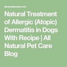 Natural Treatment of Allergic (Atopic) Dermatitis in Dogs With Recipe | All Natural Pet Care Blog